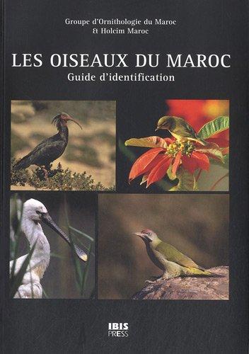 les-oiseaux-du-maroc-guide-didentification