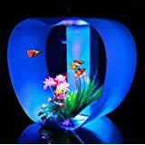 iWish Aquariums Fish Tank (Blue)