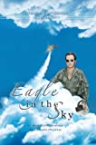 Air Force: Eagle in the Sky (Israeli Air Force)