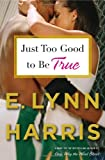 Just Too Good to Be True: A Novel