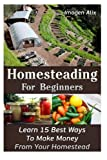 img - for Homesteading For Beginners: Learn 15 Best Ways To Make Money From Your Homestead: (How to Build a Backyard Farm, Mini Farming Self-Sufficiency On 1/ ... Urban farming, How to build a chicken coop,) book / textbook / text book