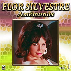 Amazon.com: Amemonos Vol. 1: Flor Silvestre: MP3 Downloads