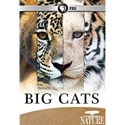 Nature: Big Cats Set