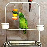 12cm-Fruit-Vegetable-Holder-Skewer-for-Parrot-Bird-Rabbit-Hutch-Cages