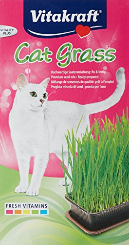 vitakraft-24031-herbe-a-chat-cat-gras