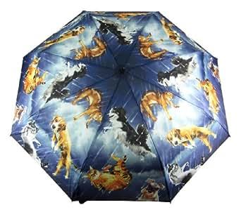 Galleria Raining Cats Dogs Folding Umbrella