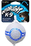 Nite Ize Meteorlight LED Pet Ball