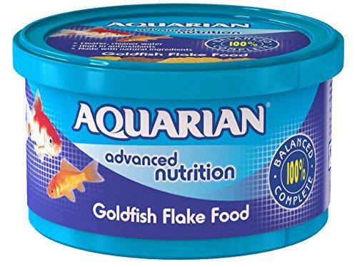 Best Flake Food For Goldfish