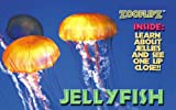 Animal Flipbooks (Jellyfish)