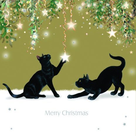 Tomfoolery Black Cats Luxury Christmas Cards Pack