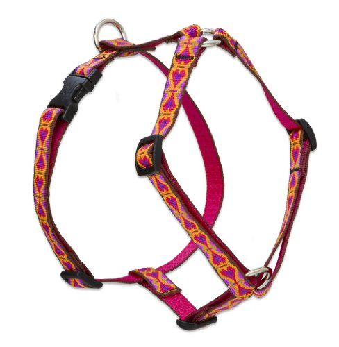 Lupine 3/4-Inch Heart 2 Heart 20 To 32-Inch Roman Harness For Medium Dogs front-69268