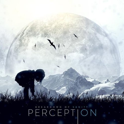Perception by Breakdown of Sanity (2013) Audio CD