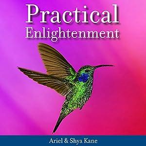 Practical Enlightenment Audiobook