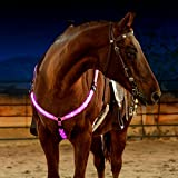 LED Horse Breastplate Collar - USB Rechargeable - Best High Visibility Tack For Horseback Riding - Adjustable, Sturdy & Comfortable Equestrian Safety Gear - Makes Your Horse Visible, Safe and Seen