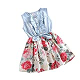 Internet Baby Girls Tutu Denim Dress Short Sleeve Lace Princess Party Skirts for 1-6 Years Old