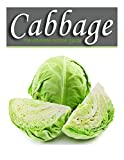 Cabbage - The Ultimate Recipe Guide