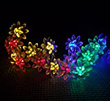 Solar Powered LED String Lights 5M 20LED Double Lotus Flower For Christmas Garden,Outdoor,Party.Patio,Lawn,Fence,Yard Decorations, etc. (Multi-color)