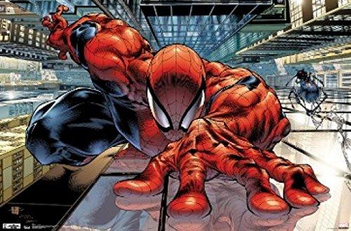 The Amazing Spiderman Wall Crawler Poster Print (24 X 36)