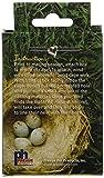 Prevue Pet Products BPV103 Cotton Thread Fibers Bird Nesting Material Box