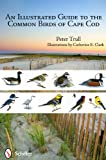 An Illustrated Guide to the Common Birds of Cape Cod