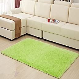 Hughapy Home Decorator Modern Shag Area Rugs Super Soft Solid Living Room Carpet Bedroom Rug and Carpets,80 120cm(Apple Green)