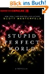 Stupid Perfect World (HarperTeen Impu...