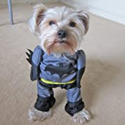 Alfie Couture Designer Pet Apparel - Superhero Costume Batman - Size: S