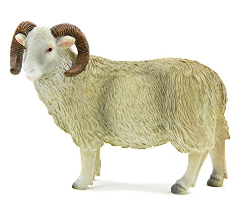 White Face Curly Horn Sheep (Ram) by Mojo