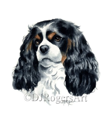 """Cavalier King Charles Spaniel"" Watercolor Art Print Signed by Artist DJ Rogers"
