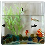 KAZE HOME Wall Mount Square Fish Bowl