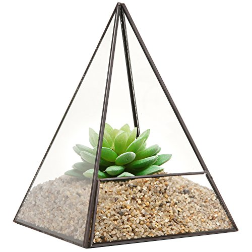 Modern Glass Pyramid Tabletop Succulent Plant Terrarium Box / Air Plant & Cacti Holder Case - MyGift® (Pyramid Glass Display Case compare prices)