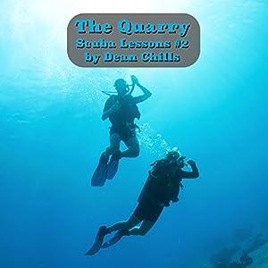 The Quarry Audiobook