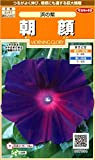 サカタのタネ 実咲花7004 朝顔 浜の紫 00907004 10袋セット