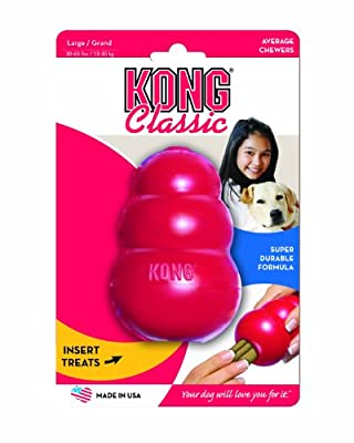 Kong Toy Lrg 4.5 In from Kong