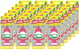 51ePCYhHXKL. SL160  Little Trees Hanging Car and Home Air Freshener, Morning Fresh (Pack of 24)