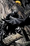 Fabian Nicieza Batman Time And The Batman TP
