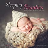 img - for Sleeping Beauties: Newborns in Dreamland 2015 Wall (calendar) book / textbook / text book