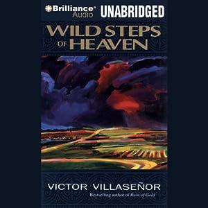 Wild Steps of Heaven Audiobook