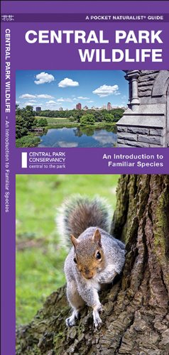 Central Park Wildlife: A Folding Pocket Guide to Familiar Species (Pocket Naturalist Guides), Buch
