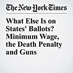 What Else Is on States' Ballots? Minimum Wage, the Death Penalty and Guns |  The New York Times
