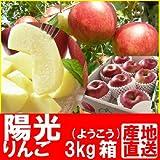 福島県産 甘いりんご (陽光) 3kg箱 (7~11玉入) ランキングお取り寄せ