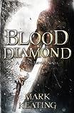 img - for Blood Diamond: a Pirate Devlin Novel book / textbook / text book
