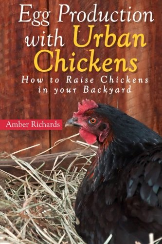 Egg Production with Urban Chickens: How to Raise Chickens in Your Backyard (Chickens For Eggs compare prices)