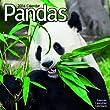 Pandas 2014
