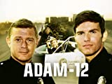 Adam-12: Log 61: The Runaway