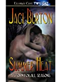 img - for Summer Heat (A Storm for All Seasons, Book One) book / textbook / text book