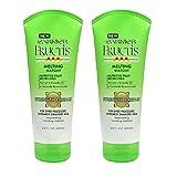 2-PACK Garnier Fructis Strength & Repair Melting Masque 6.8 oz.