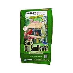 Red River 50058 Valley Splendor Black Oil Sunflower, 20-Pound