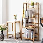 4 Tier Home Room Bookcase Bookshelf Bamboo Shelf Ladder Storage Display Stsand