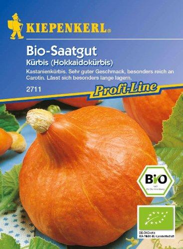 Image of Kürbis (Hokkaidokürbis) Uchiki-Kuri (Bio-Saatgut)